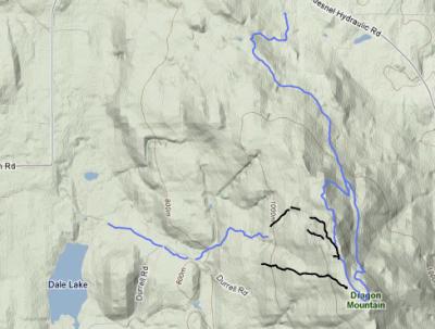 Dragon Mountain Trail Network